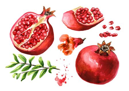 Fresh ripe whole and cut pomegranate with seeds, flower and leaves set