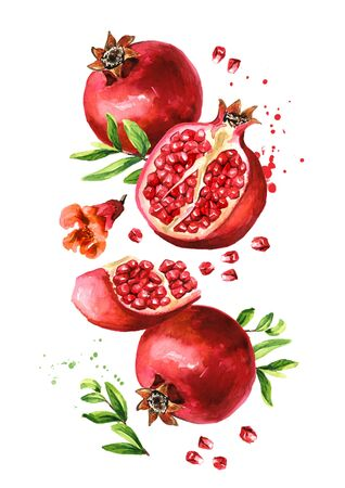 Flying fresh ripe whole and cut pomegranate with seeds, flower and leaves.