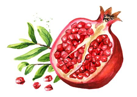 Pomegranate fruit with pomegranate leaves.