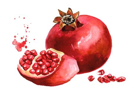 Pomegranate fruit Watercolor hand drawn isolated on white Zdjęcie Seryjne