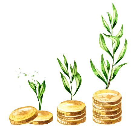 Plant Growing In Savings Coins.