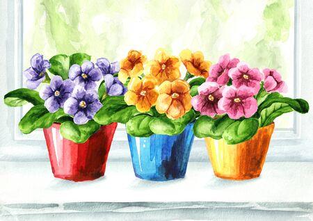 Bright potted flowers on the windowsill. 版權商用圖片
