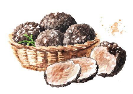 Basket with Black truffle mushrooms.