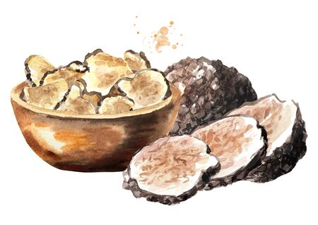 Black truffle mushrooms and dry slices in the bowl, Watercolor hand drawn illustration, isolated on white background