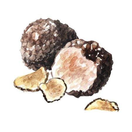 Black truffle mushrooms and dry slices 版權商用圖片