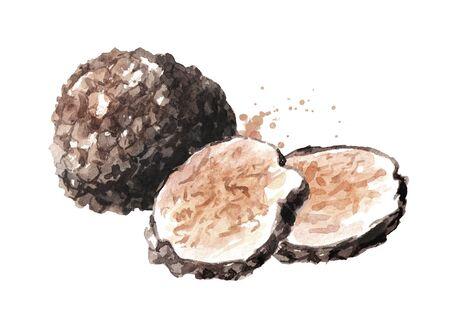 Black truffle mushrooms and slices