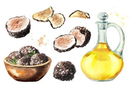 Black truffle mushrooms set, Watercolor hand drawn illustration  isolated on white background