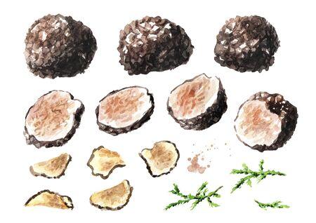 Black truffles and slices  mushroom set.