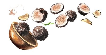 Bowl with black truffles mushrooms. Hand drawn horizontal watercolor illustration, isolated on white background