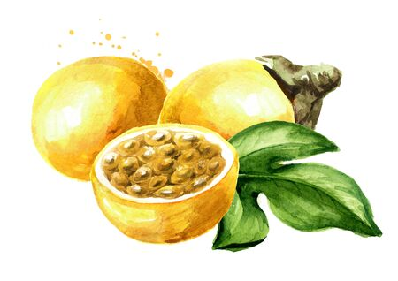 Whole and half yellow passion fruit or maracuya with green leaf.