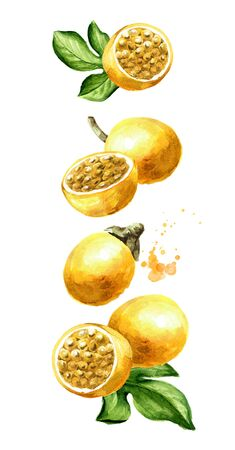 Flying yellow Passion fruits with leaves.