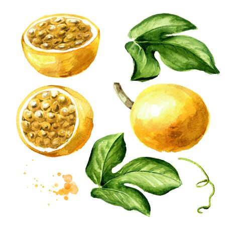 Passion fruit with leaves set on white Archivio Fotografico