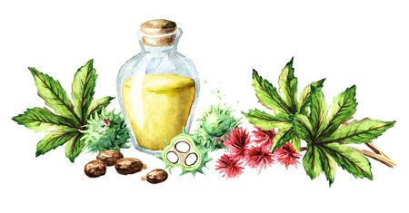 Castor oil bottle with green castor fruits, beans, flowers, leaves and seeds on white