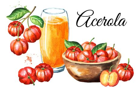 Acerola or Barbados cherry card. Watercolor hand drawn illustration isolated on white background