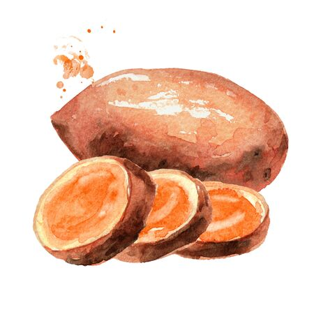 Raw sweet potato on white