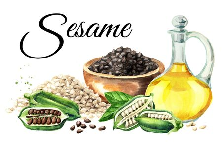 Fresh Sesame pods with seeds and bottle with oil card