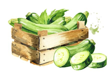 Box with green zucchini vegetable.
