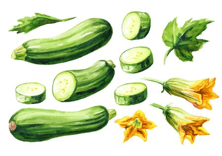 Green whole and cut zucchini vegetables with leaf and flower set. Stock fotó