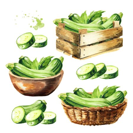 Zucchini vegetable set on white Stock fotó