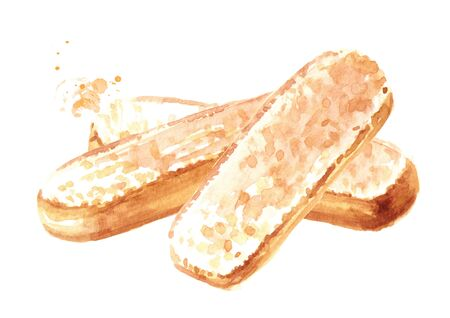 Savoiardi biscuits or ladyfingers cookies. Watercolor hand drawn illustration isolated on white background