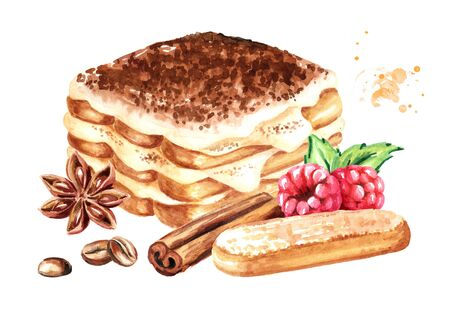 Tiramisu, Italian traditional sweet dessert decorated with fresh raspberry, with savoyardi cookies and spices. Watercolor hand drawn illustration isolated on white background