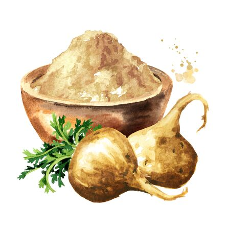 Maca root or Peruvian ginseng with maca powder in the bowl, Organic vegetable, superfood. Watercolor hand drawn illustration isolated on white background