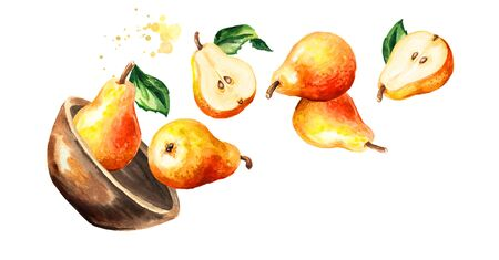 Bowl with fresh ripe red yellow honey pear fruits. Hand drawn horizontal watercolor illustration, isolated on white background