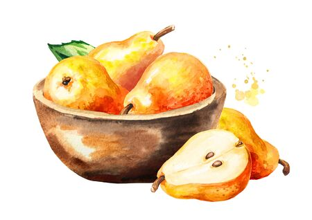 Bowl with fresh ripe red yellow honey pear fruits. Hand drawn watercolor illustration, isolated on white background