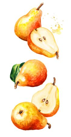 Falling ripe red yellow honey pear fruits with green leaves. Hand drawn watercolor illustration, isolated on white background Stock fotó