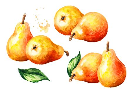 Fresh ripe honey pear fruit with green leaf set. Hand drawn watercolor illustration isolated on white background Stock fotó