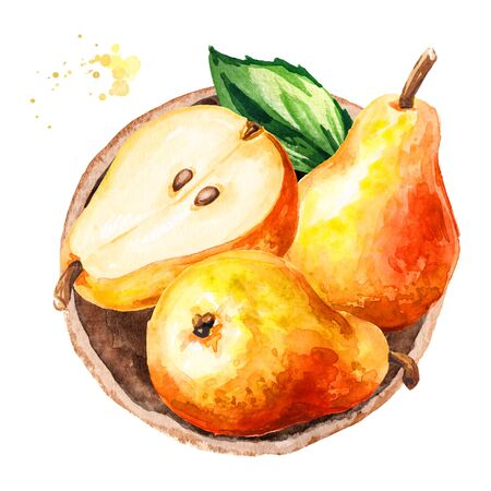 Fresh ripe red yellow honey pear fruits, top view. Hand drawn watercolor illustration isolated on white background Stock fotó