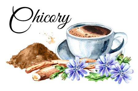 A cup of Hot Chicory drink with root flowers and powder. Watercolor hand drawn illustration, isolated on white background Stock fotó