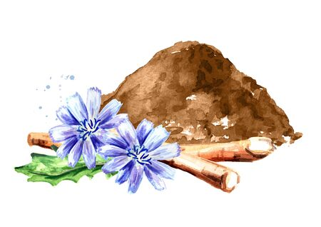 Chicory powder and cichorium flowers and roots.