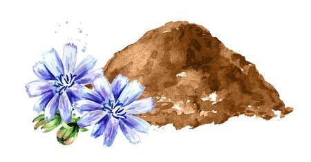 Chicory powder and cichorium flowers.