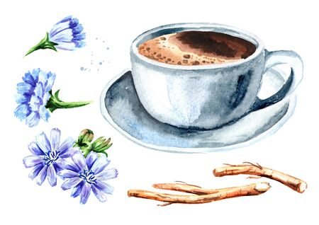 Hot Chicory drink in a cup with a flower and dried chicory roots set