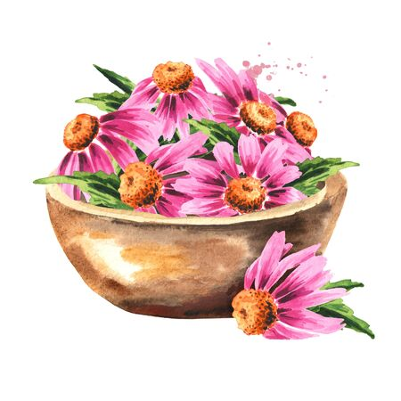 Bowl with Echinacea purpurea flowers and leaves, medical plant or herb.