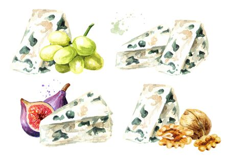 Blue mould Italian, French cheese, grape, nut and fig fruit set. Hand drawn watercolor illustration isolated on white background