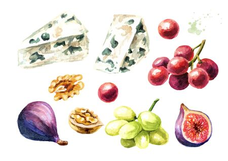 Blue mould Italian, French cheese, grape, nut and fig fruit set. Hand drawn watercolor illustration, isolated on white background