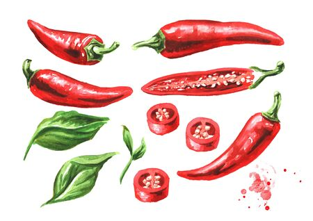 Red hot chili pepper, whole pods, chopped, halved, and sliced set with green leaf. Hand drawn watercolor illustration isolated on white background