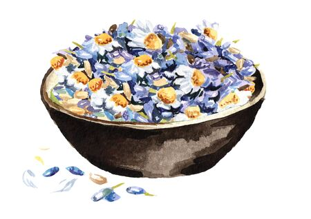 Bowl with Calming herbal collection.  Lavender with chamomiles. Hand drawn watercolor illustration isolated on white background