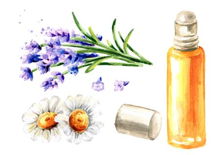 Essential oil with roller, lavender and chamomile. Calming herbal collection set. Hand drawn watercolor illustration isolated on white background