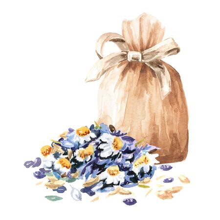 Sachet, bag with relaxing soothing herbal collection, chamomile with lavender. Calming pillow. Hand drawn watercolor illustration, isolated on white background