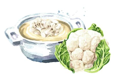 Vegetarian cream soup with Organic cauliflower. Hand drawn watercolor illustration isolated on white background Banco de Imagens