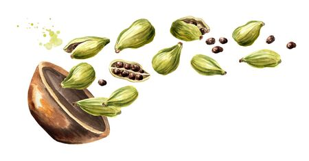 Bowl with Cardamon pods, Super food and indian aroma spice. Hand drawn horizontal watercolor illustration isolated on white background