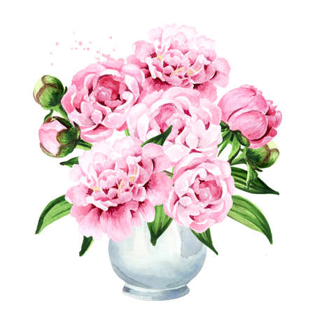 Pink peony Flowers bouquet in a vase. Hand drawn watercolor illustration isolated on white background