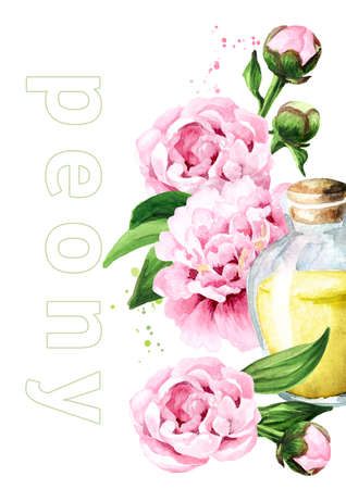 Pink peony Flowers and aroma essential oil card. Hand drawn watercolor illustration isolated on white background