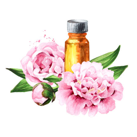 Pink peony Flowers and aroma essential oil in the bottle Hand drawn watercolor illustration isolated on white background