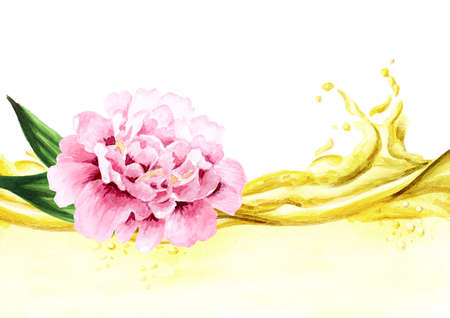 Pink peony Flowers and aroma essential oil wave. Hand drawn watercolor illustration isolated on white background 版權商用圖片