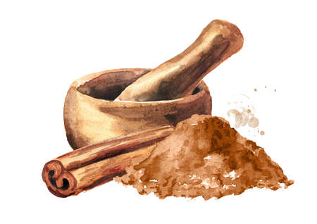 Cinnamon and mortar. Hand drawn watercolor illustration, isolated on white background Stockfoto