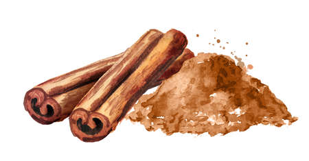 Cinnamon sticks and powder. Hand drawn watercolor illustration, isolated on white background